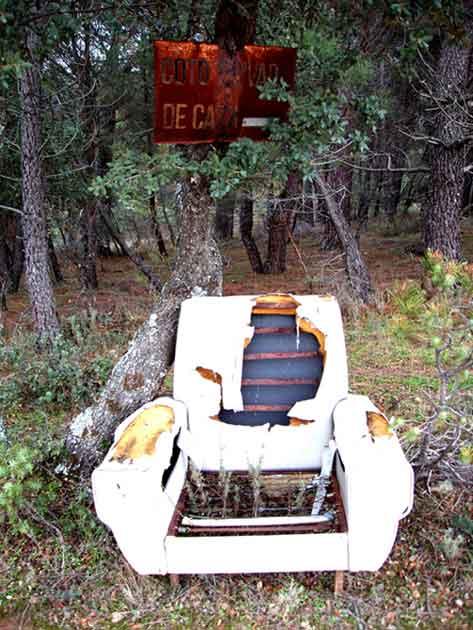 1 sillón en el bosque