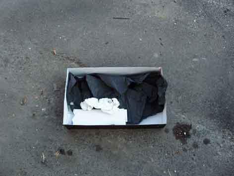 la última bolsa y la última caja